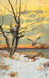 snow scene on riverbank, two ducks flying right, tree on left