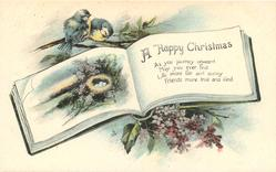 A HAPPY CHRISTMAS  blue-tits above rural inset & nest in book, lilac below