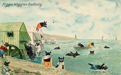 PIGGIE WIGGIES BATHING  pigs bathe in sea from bathing huts