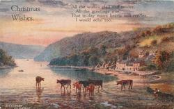 CHRISTMAS WISHES  DITTISHAM ON THE DART