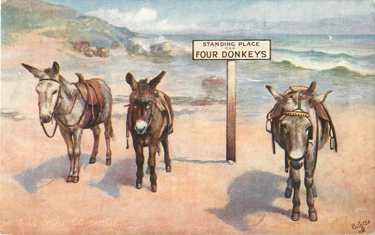 STANDING PLACE FOR FOUR DONKEYS  on notice-board