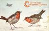 ROBINS  two on the snowy ground, another little bird flying down