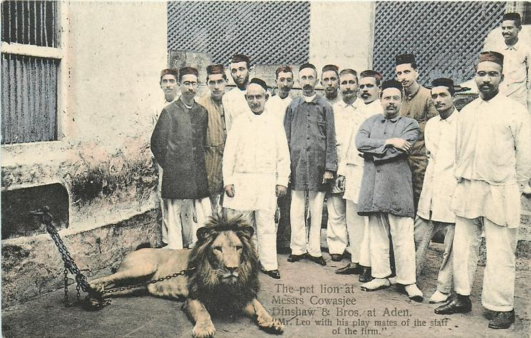 MR. LEO WITH HIS PLAY MATES OF THE STAFF OF THE FIRM