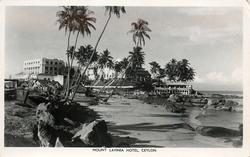 mid-distant view of  palms & hotel sea right