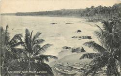SEA SHORE FROM MOUNT LAVINIA