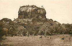 SIGIRIYA ROCK AND PLAIN