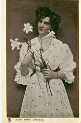 MISS DAISY CORDELL