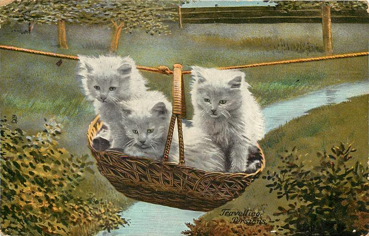 TRAVELLING PERSIANS