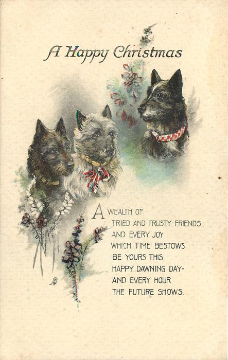A HAPPY CHRISTMAS  three scotch terriers