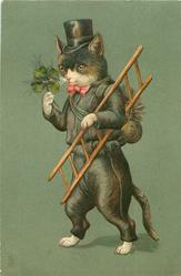 chimney sweep cat in black, carries ladder & 4 leaf clover