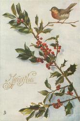sprig of holly base at lower right, robin upper right