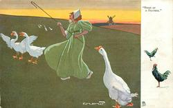 """""""BIRDS OF A FEATHER.""""  geese"""