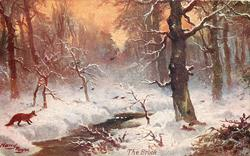 THE BROOK  fox in forest & stream snow scene