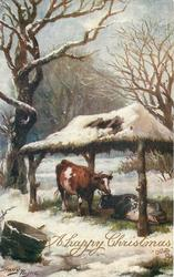 A HAPPY CHRISTMAS  two cows shelter under open sided barn in snow