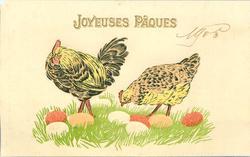 cock & hen examine eight coloured Easter eggs