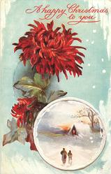 round inset lower right, man and boy walk toward house with light in window, tree behind, large red flower left of insert