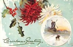 round inset lower right, man and boy walk toward windmill, large red  and white mums upper left of insert