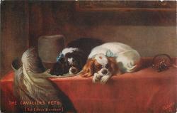 THE CAVALIER'S PETS