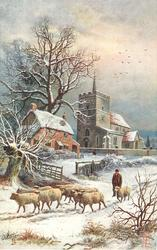 man walking on snowy road with many sheep, house and church behind