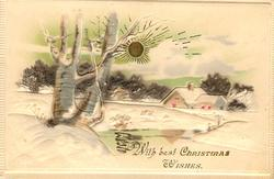 WITH BEST CHRISTMAS WISHES grey tree left, house right, gilt sun