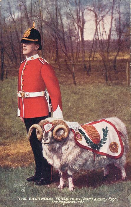 THE REGIMANTAL PET-THE SHERWOOD FORESTERS (NOTTS & DERBY REGT.)