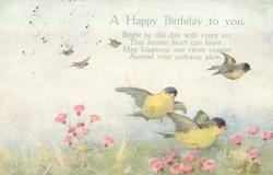 A HAPPY BIRTHDAY TO YOU  three blue tits fly over flowers
