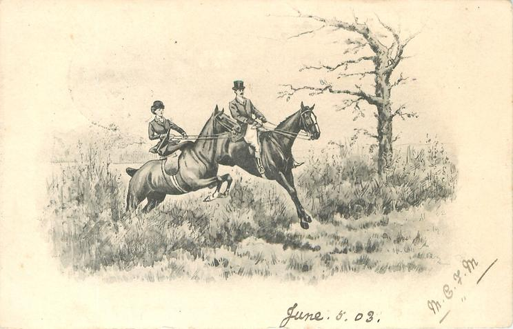 man & woman in hunting attire on horseback jump low hedgerow