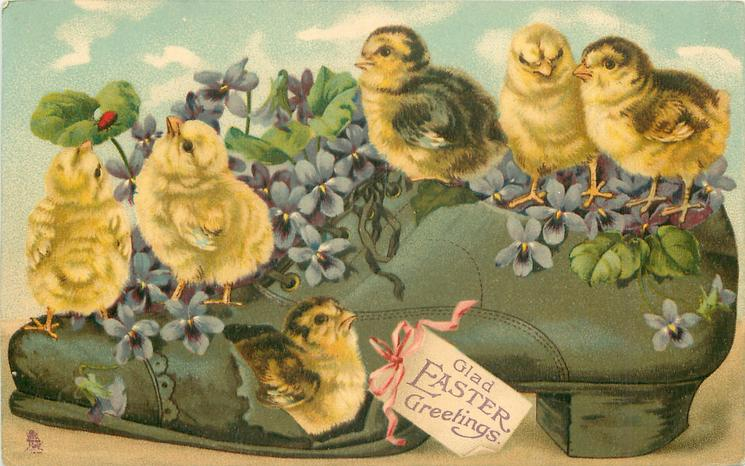 GLAD EASTER GREETINGS  chicks in shoe
