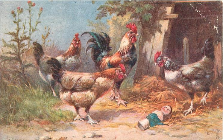 four chickens, two looking at doll