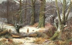 snowy wood scene, man with gun and dog walking away