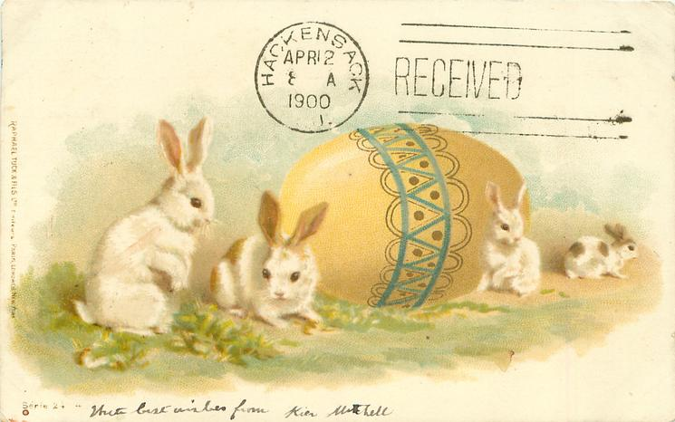 large yellow Easter  egg behind four rabbits