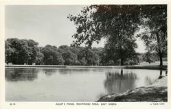 ADAM'S POND, RICHMOND PARK