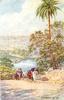NARSINGARH, THE LAKE