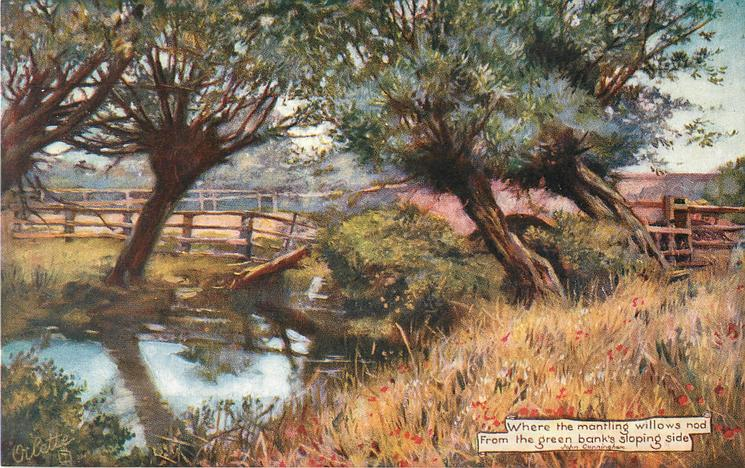 """""""WHERE THE MANTLING WILLOWS NOD FROM THE GREEN BANKS SLOPING SIDE"""""""