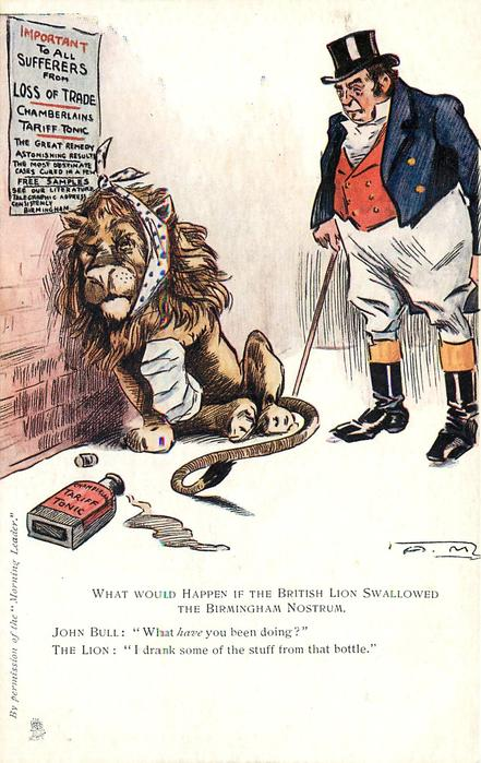WHAT WOULD HAPPEN IF THE BRITISH LION SWALLOWED THE BIRMINGHAM NOSTRUM