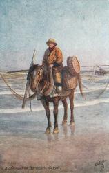 A SHRIMPER ON HORSEBACK, COXYDE