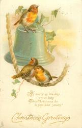 CHRISTMAS GREETINGS robins on bell & bell rope