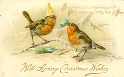 WITH LOVING CHRISTMAS WISHES two robins one wears paper hat