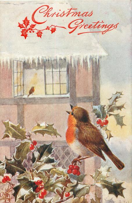 robin sings on twig below open window, another distant on sill