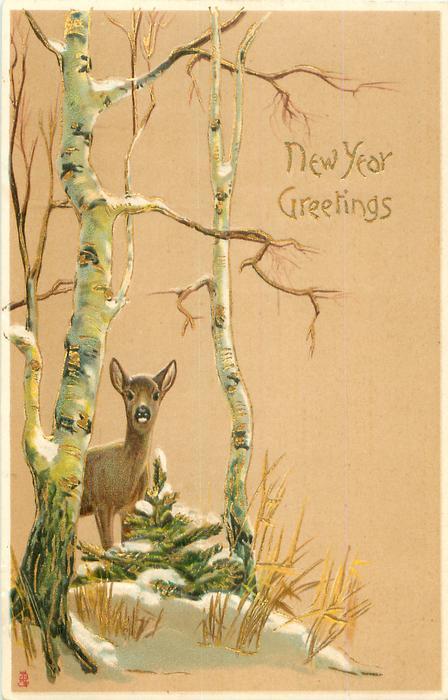 NEW YEAR GREETINGS  doe beneath silver birch tree, left