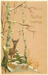NEW YEAR GREETINGS  doe beneath silver birch tree, left