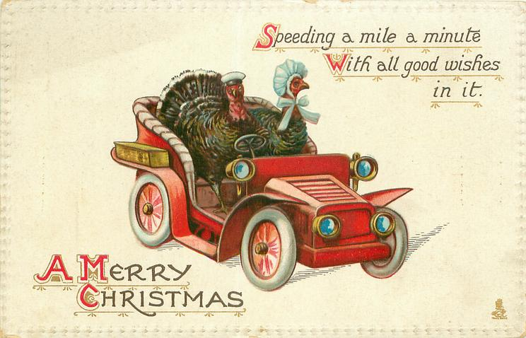 A MERRY CHRISTMAS    turkey gobbler drives car, hen sits beside