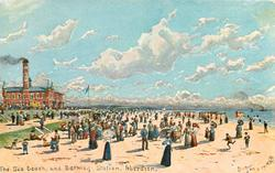THE SEA BEACH, AND BATHING STATION