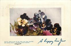 A HAPPY NEW YEAR   pansies