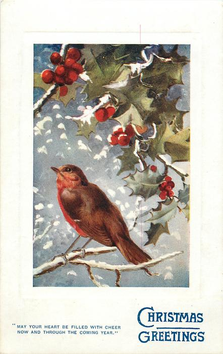 CHRISTMAS GREETINGS  robin below, faces left, holly above
