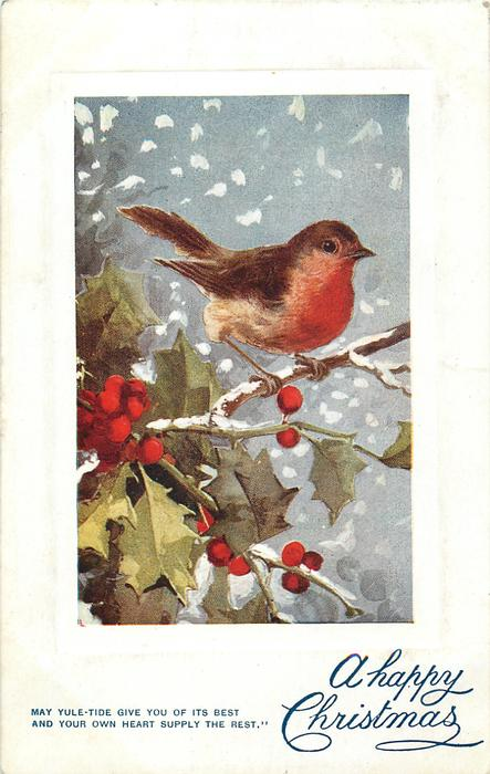 A HAPPY CHRISTMAS  robin above holly, faces right