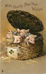 WITH HEARTY NEW YEAR WISHES  four piglets in basket which has green 4 leaf clover attached