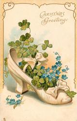 CHRISTMAS  GREETINGS   white slipper,  4 leaf clover & blue forget-me-nots