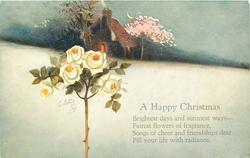 A HAPPY CHRISTMAS   white roses, small house in background