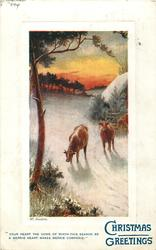 CHRISTMAS GREETINGS   three cows in snow